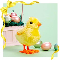Stock Those Easter Baskets | Zulily