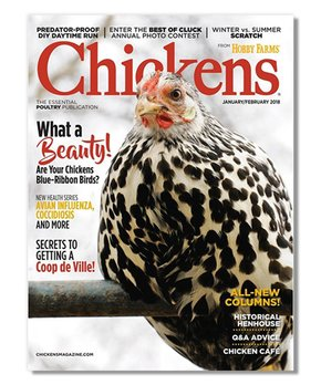 Just CrossStitch Magazine Subscription