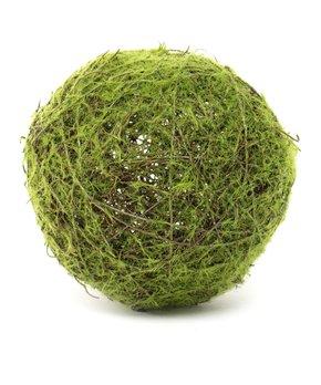 ZiaBella | 5'' Moss Ball