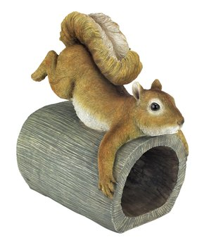 National Squirrel Day Is Nuts! | Zulily