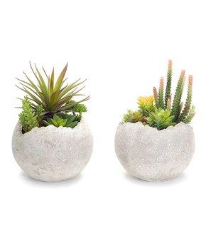 ZiaBella | 11.5'' 'Flowers & Garden' Tub