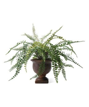 K&K Interiors | 11'' Potted Artificial Fishbone Fern Arrangement