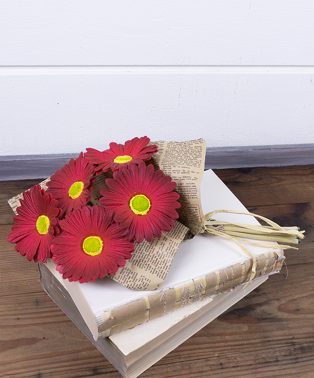 Red Gerber Daisy Bundle