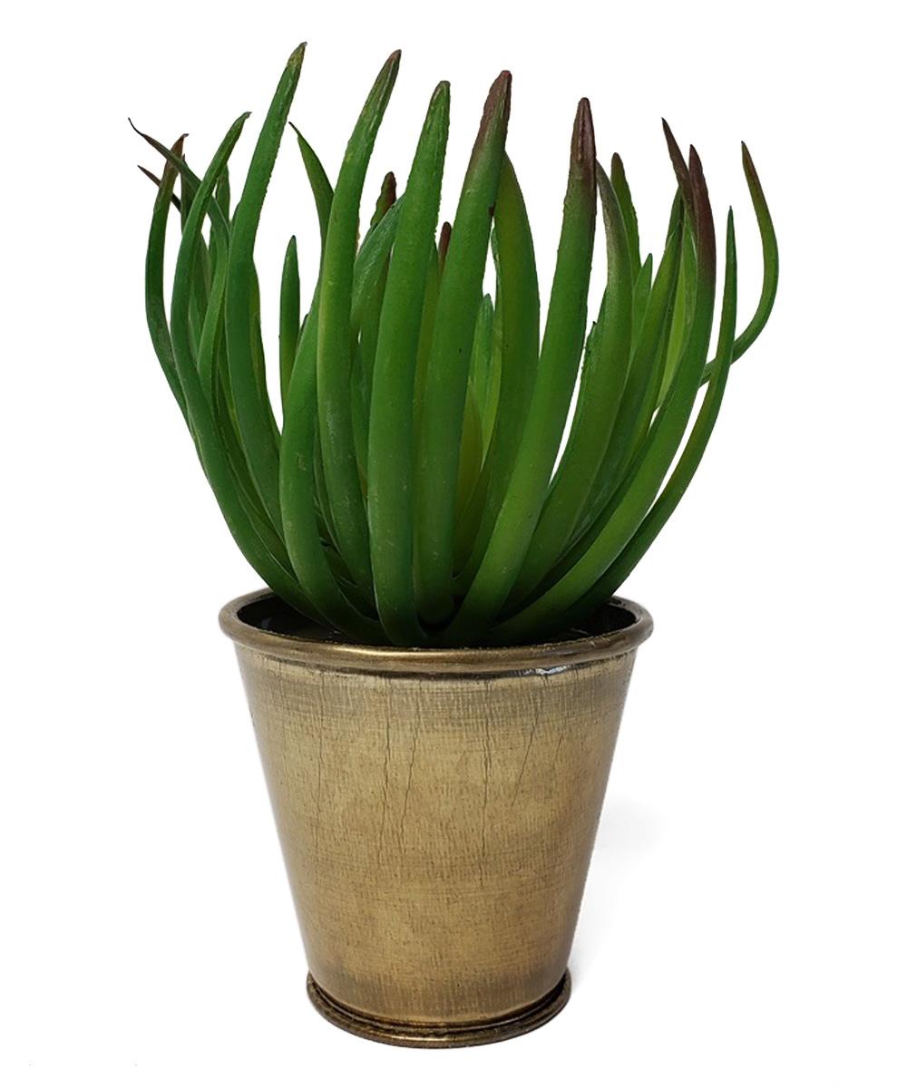 Lexie Faux Potted Succulent
