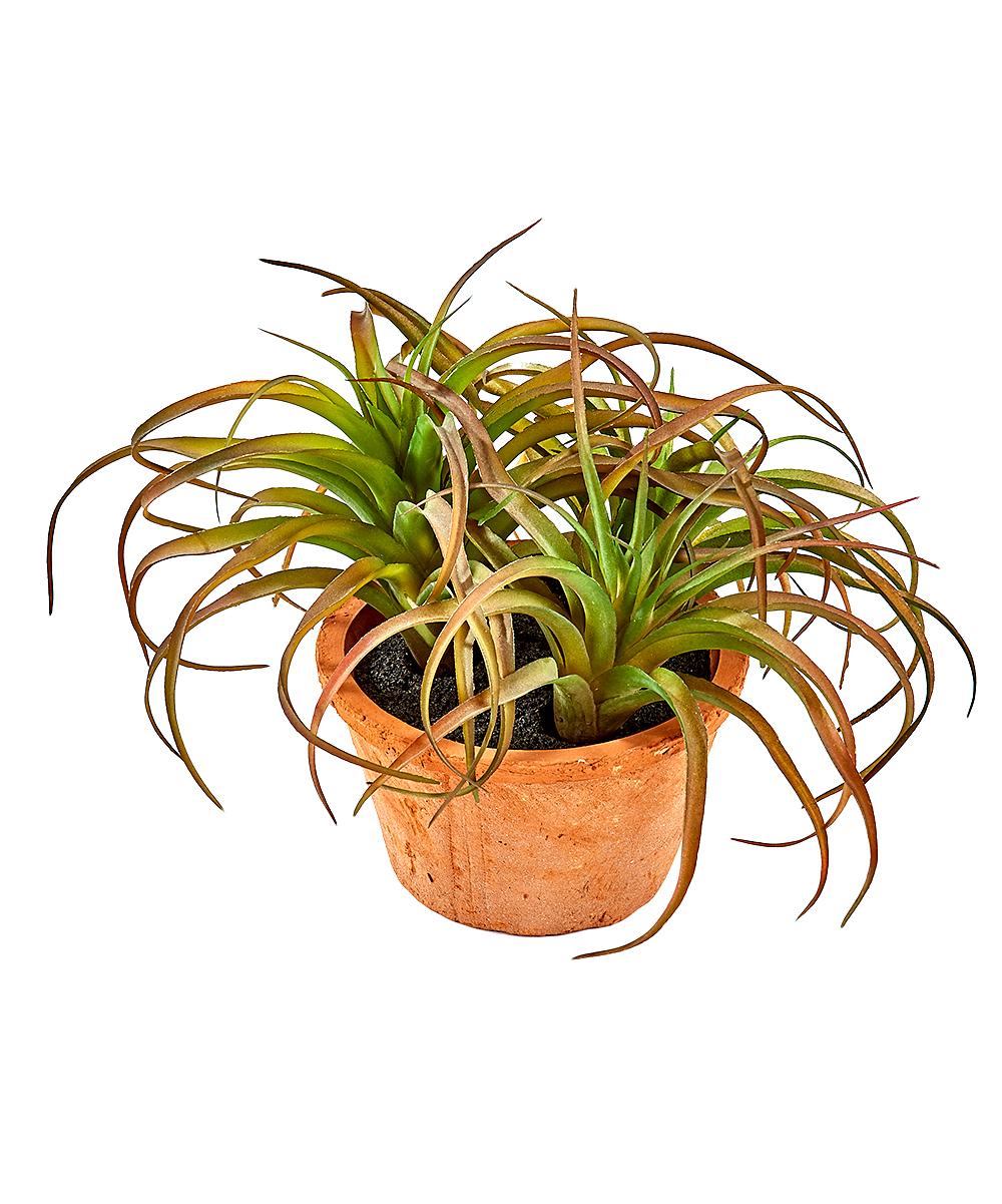 Green & Tan Potted Faux Succulent Decor