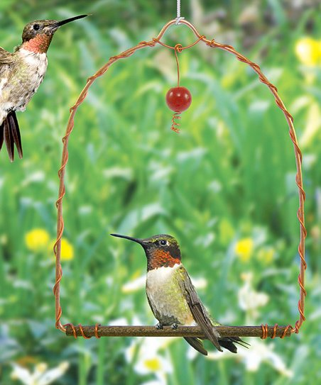 369b057d4edd8 Songbird Essentials Hummingbird Swing