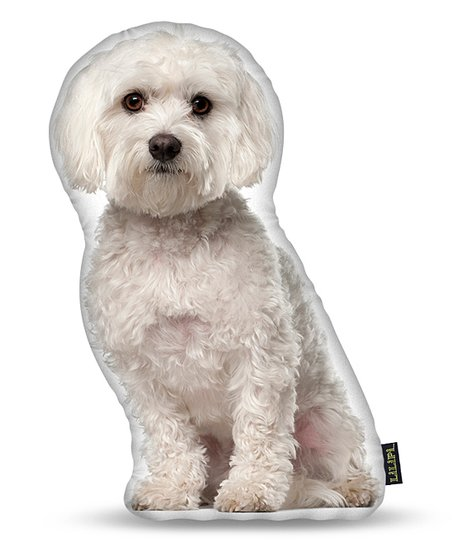 Lilipi White Maltese Indoor Outdoor Throw Pillow Best Price And Reviews Zulily