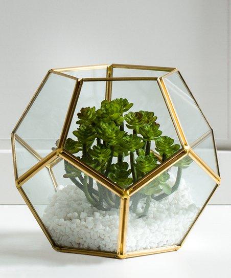 Torre Tagus Oro Glass Sphere Terrarium Zulily